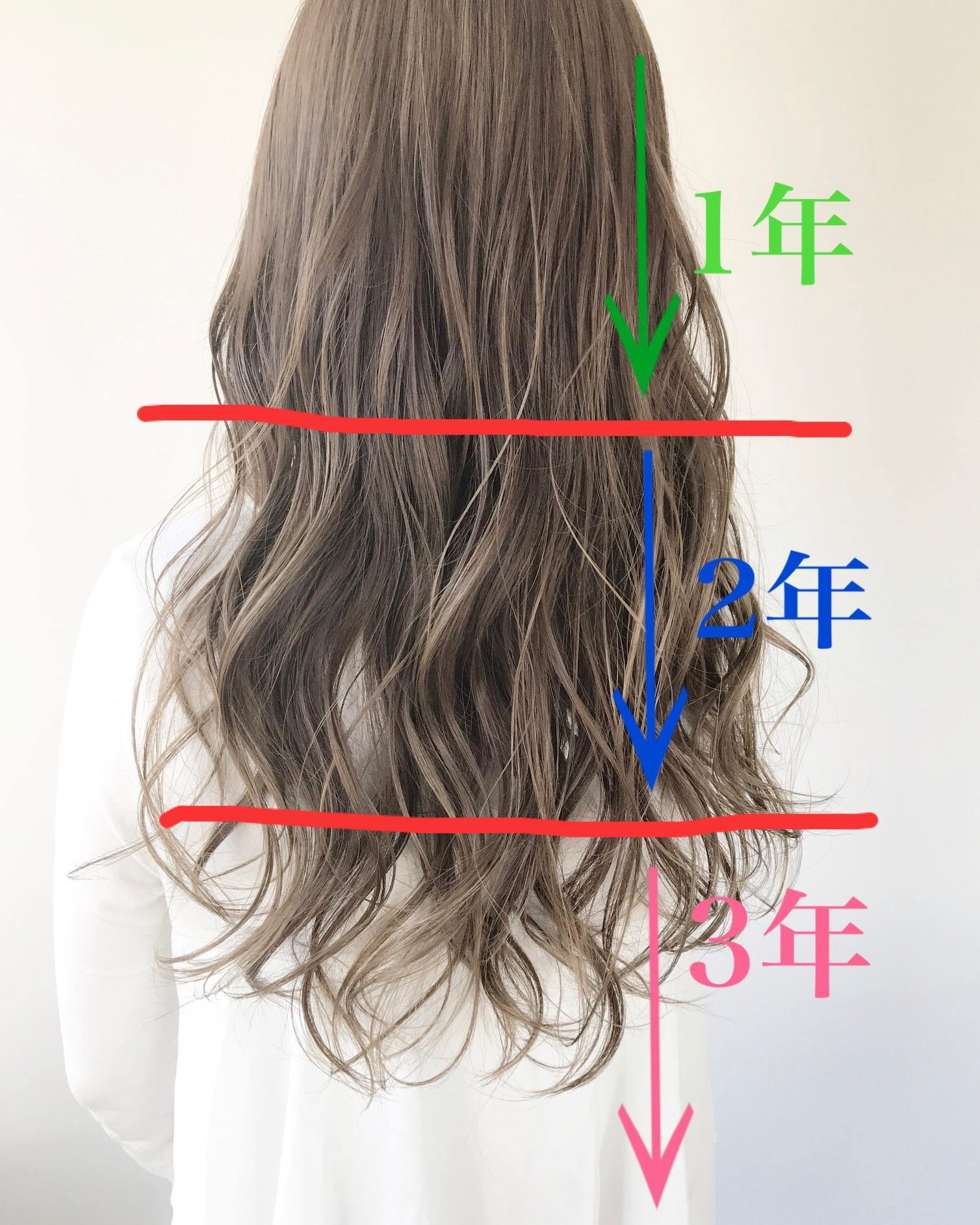 一 年 どれくらい 伸びる で 髪の毛