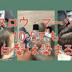 【スロウマージ10.5・白髪染め】普通なら染まらない明るさでもマージの10.5は染まる!?≪カーキベージュ編≫